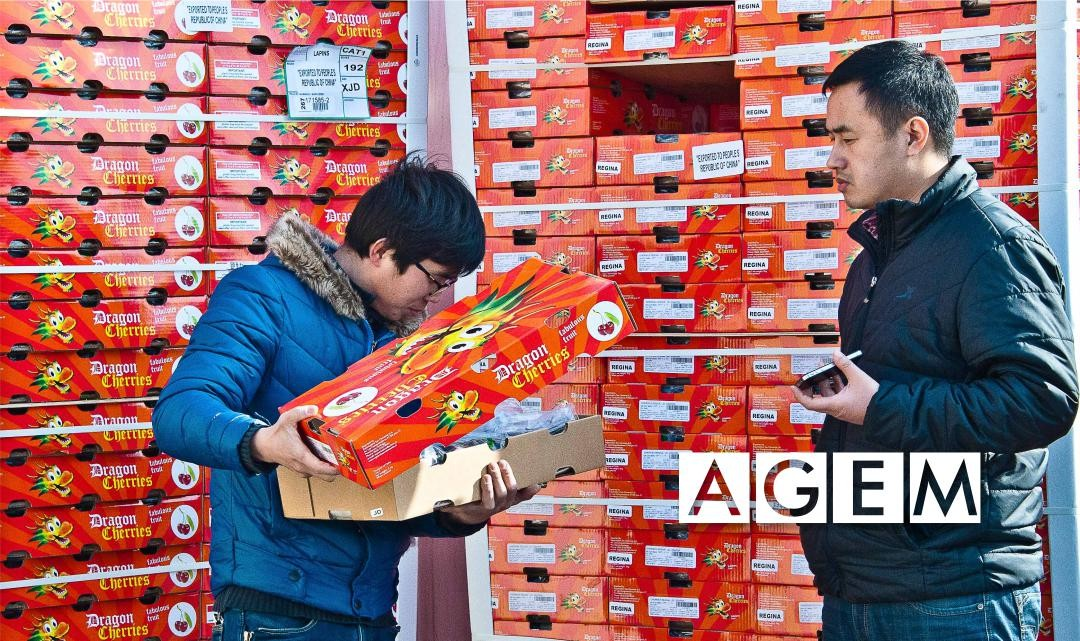 Mercado de la fruta en china - AGEM
