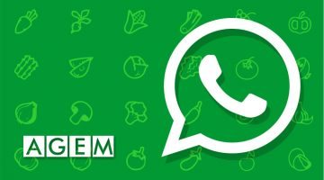 Whatsapp AGEM Mercabarna