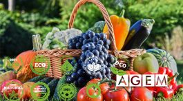 Curso de marketing de productos ecológicos - AGEM - Mercabarna